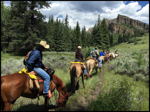 Summer Horseback Rides in the West Elk Wilderness
