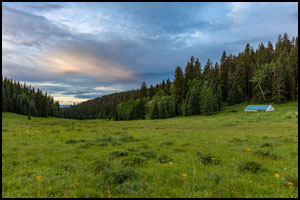 Horse Camp Trips in the West Elk Wilderness